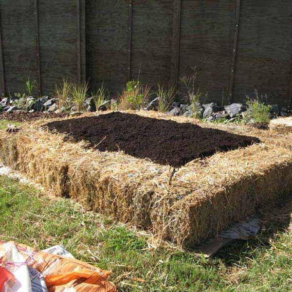 garden bed edging ideas ad 16 - Raised Bed Garden Design Ideas
