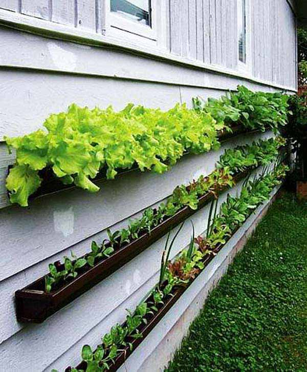 AD-Rain-Gutter-Repurposed-17