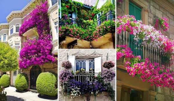 Home Garden In Balcony 54