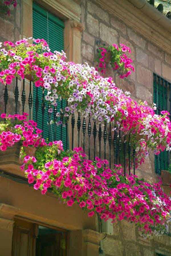 AD-Spectacular-Balcony-Garden-1