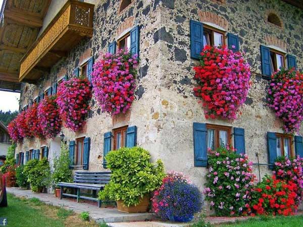 AD-Spectacular-Balcony-Garden-10