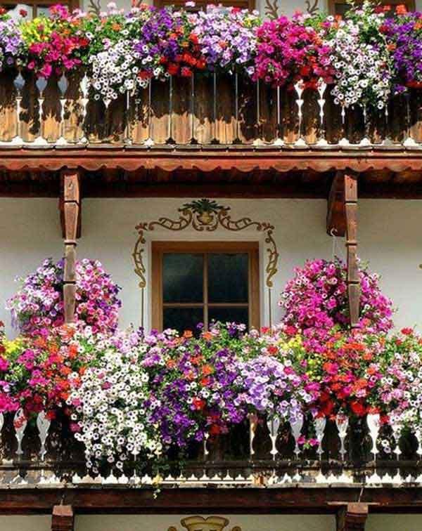 AD Spectacular Balcony Garden 11