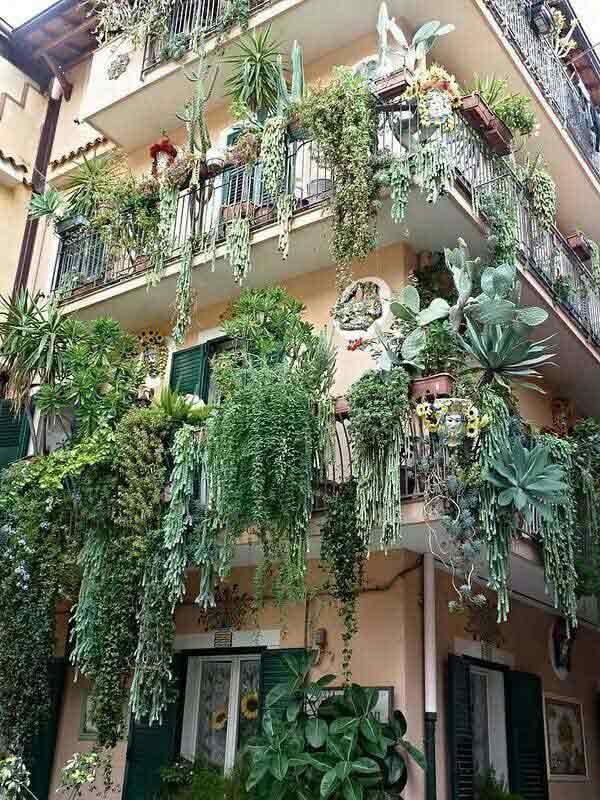 AD-Spectacular-Balcony-Garden-13