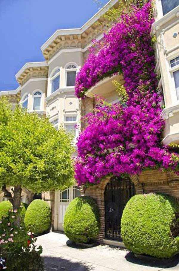 AD-Spectacular-Balcony-Garden-14