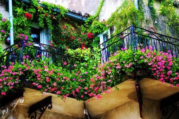 AD-Spectacular-Balcony-Garden-2