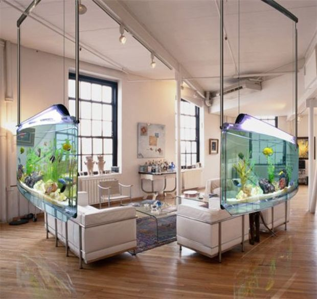 AD-Amazing-Aquariums-15