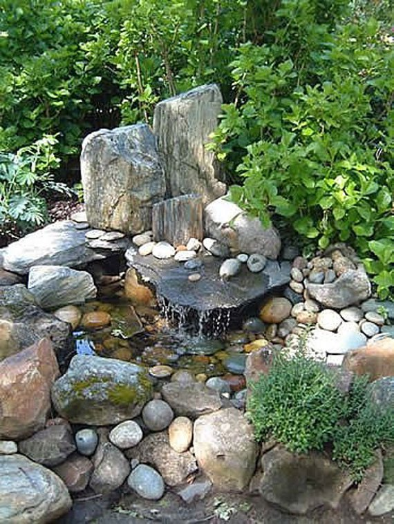 AD-Backyard-Ponds-Water-Gardens-16