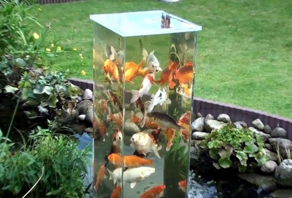Small Garden Pond Ideas Garden Design Ideas