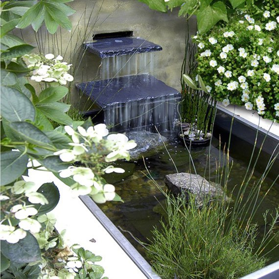AD-Backyard-Ponds-Water-Gardens-6