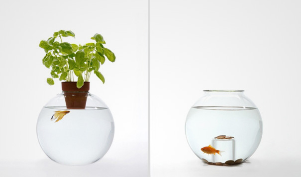 AD-Creative-Aquariums-15-1