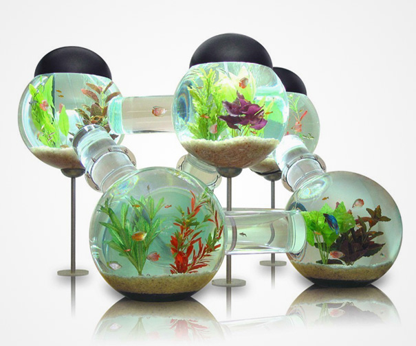 AD-Creative-Aquariums-16-1