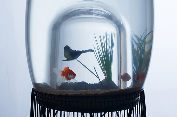 AD-Creative-Aquariums-22