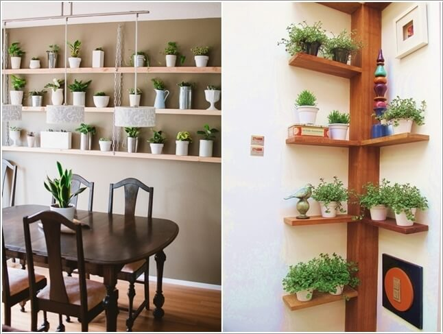 Ad Amazing Ideas For Indoor Plants 01