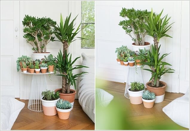 Incroyable AD Amazing Ideas For Indoor Plants 02