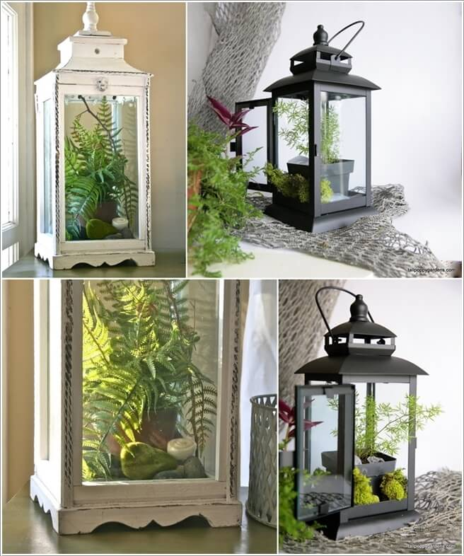 Ad Amazing Ideas For Indoor Plants 04