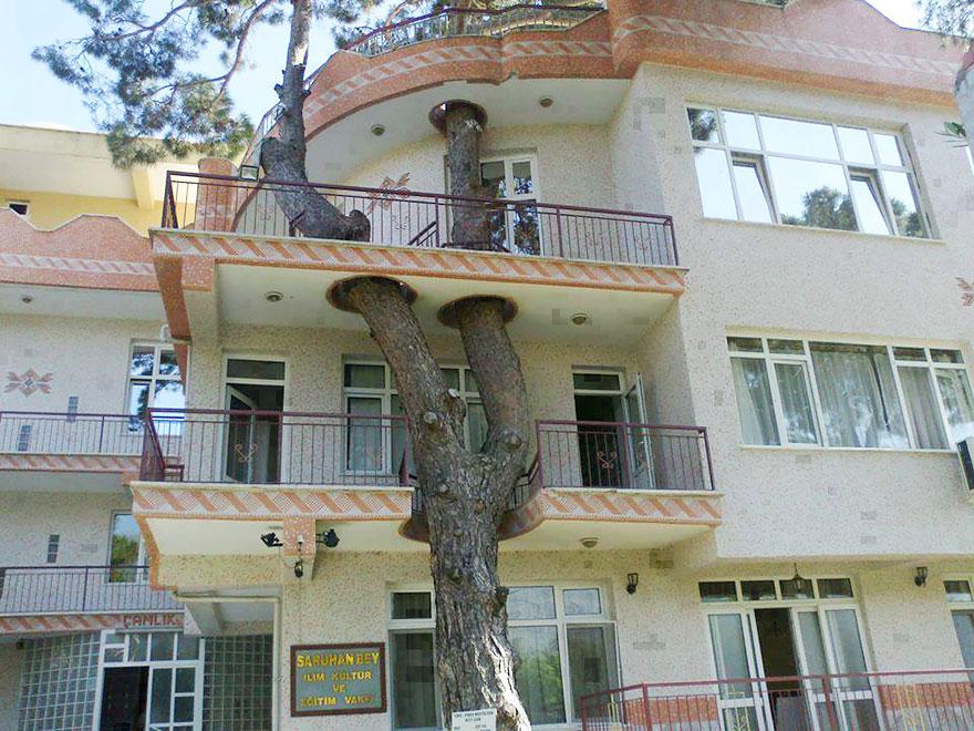 AD-Architecture-Around-The-Trees-02