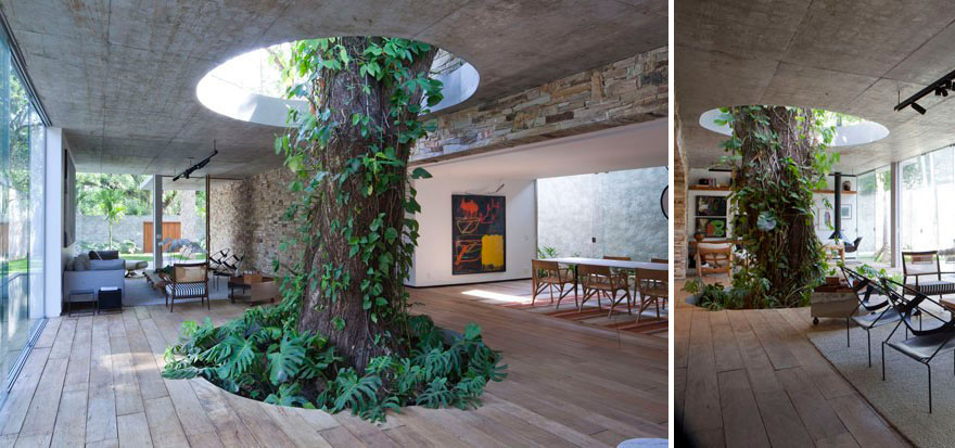 AD-Architecture-Around-The-Trees-04