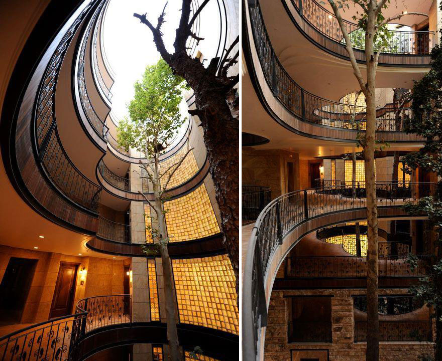 AD-Architecture-Around-The-Trees-05