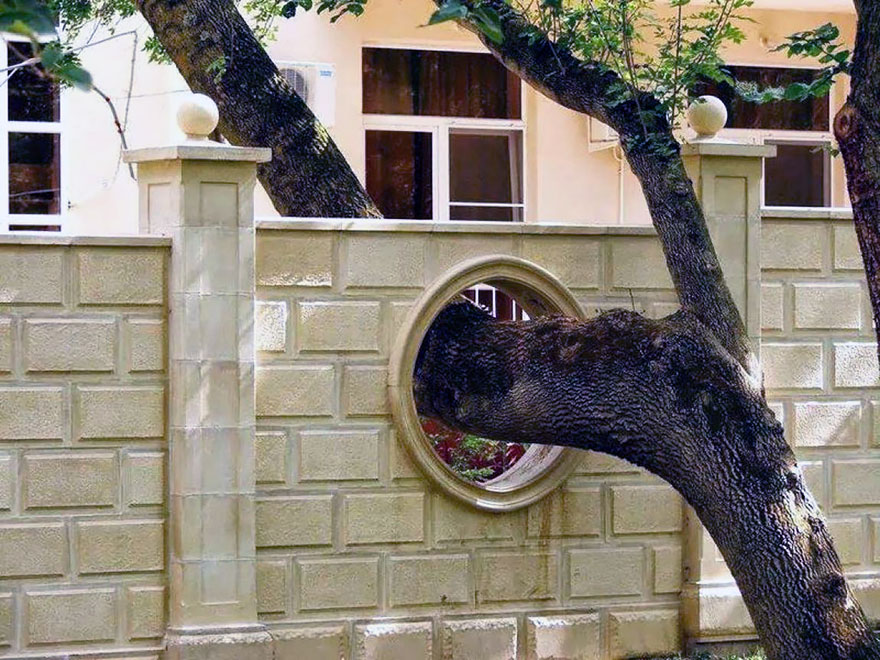 AD-Architecture-Around-The-Trees-06