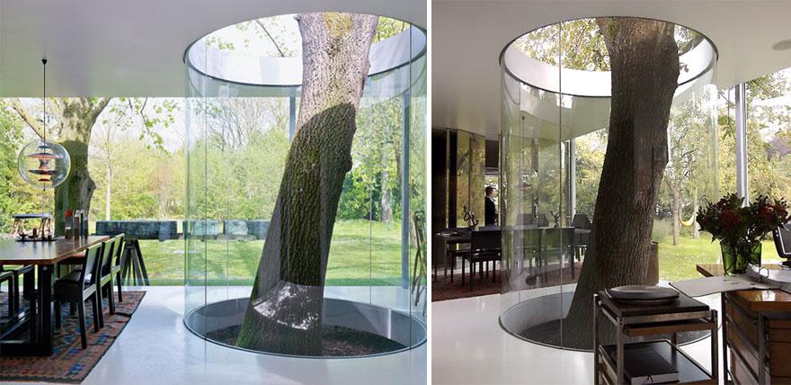 AD-Architecture-Around-The-Trees-12