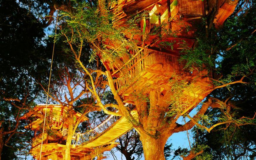 AD-Architecture-Around-The-Trees-13