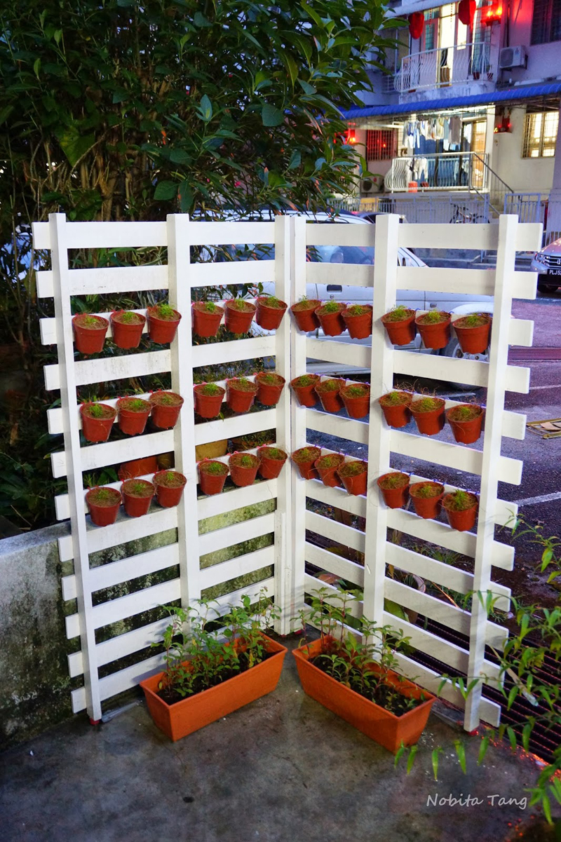 AD-Creative-DIY-Gardening-Ideas-With-Recycled-Items-11