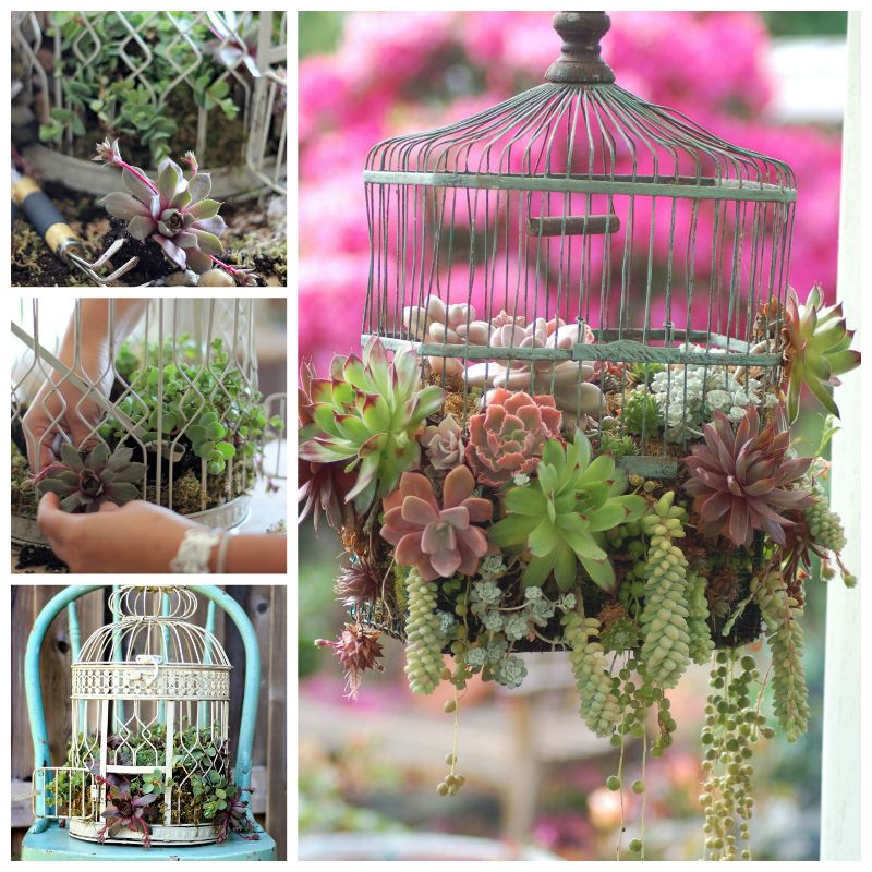 AD-Creative-DIY-Gardening-Ideas-With-Recycled-Items-42