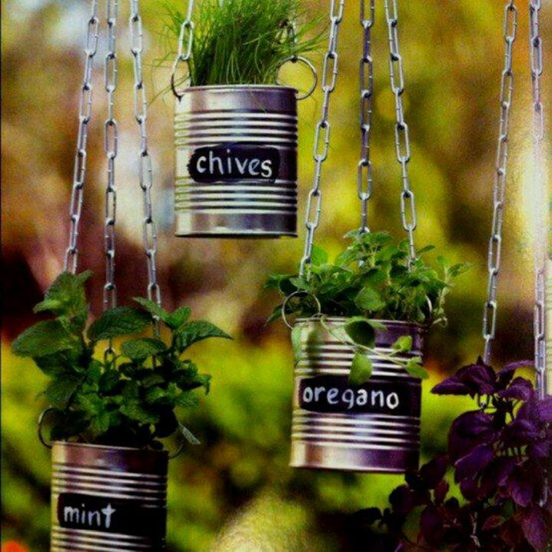 AD-Creative-DIY-Gardening-Ideas-With-Recycled-Items-5