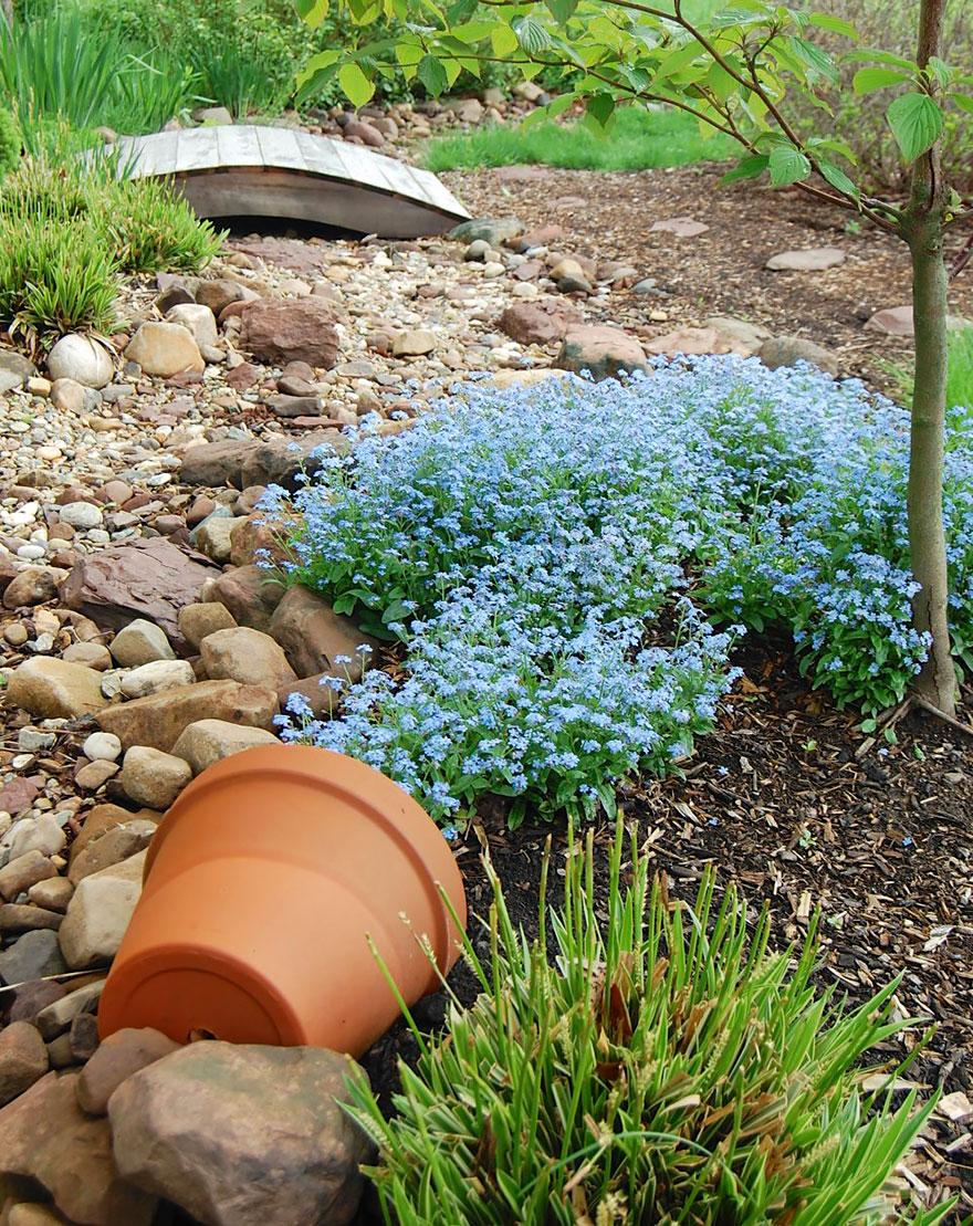 AD-Spilled-Flowers-Garden-Ideas-10