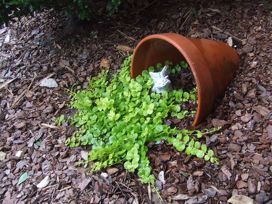 AD-Spilled-Flowers-Garden-Ideas-13