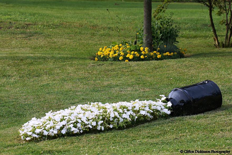 AD-Spilled-Flowers-Garden-Ideas-15