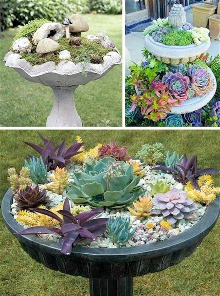 AD-Beautiful-And-Attractive-Gardening-Design-Ideas-16