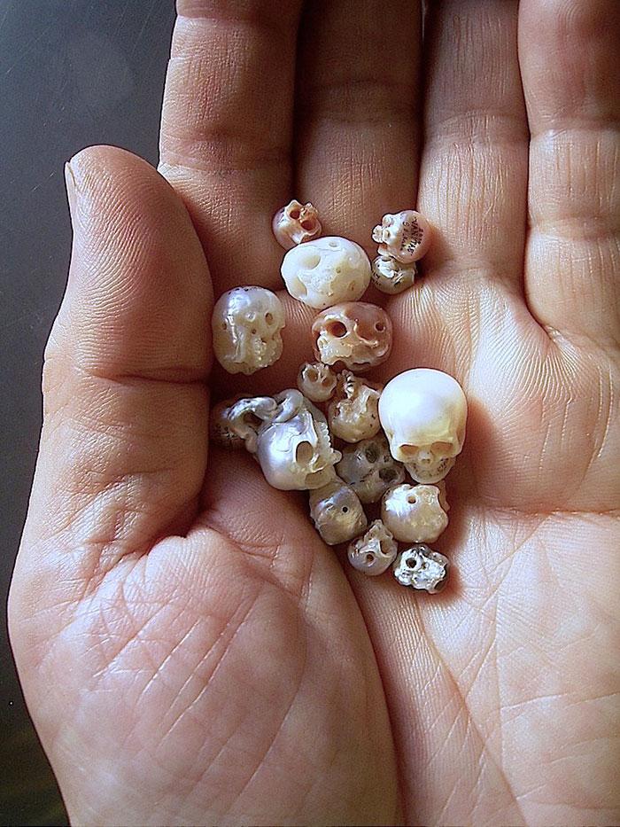 AD-Carved-Pearl-Skulls-Vanitas-Shinji-Nakaba-01