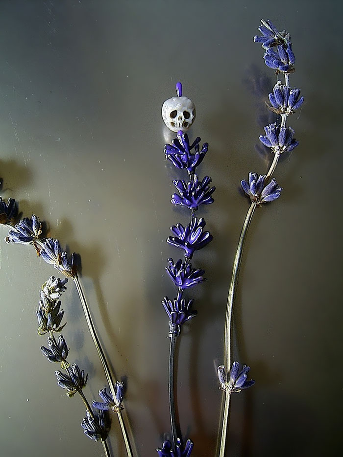 AD-Carved-Pearl-Skulls-Vanitas-Shinji-Nakaba-05