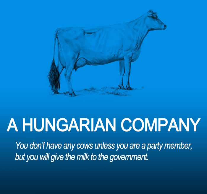 AD-Corperation-Economies-Explained-Cows-Ecownomics-21