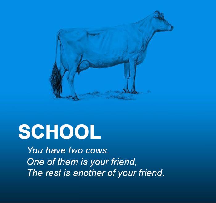 AD-Corperation-Economies-Explained-Cows-Ecownomics-299