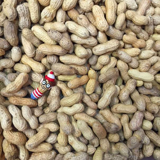 AD-Miniature-Peanut-Sculptures-Steve-Casino-04