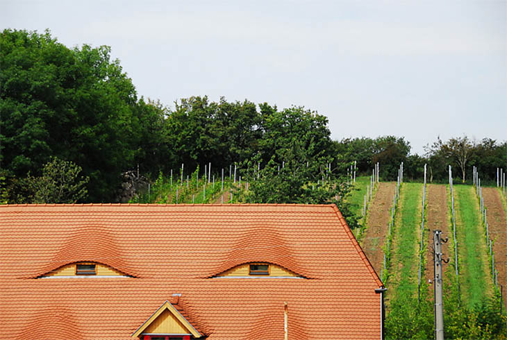 AD-Strange-Houses-With-Human-Faces-46