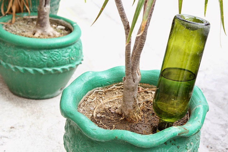 AD-DIY-Projects-For-Old-Glass-Bottles-12