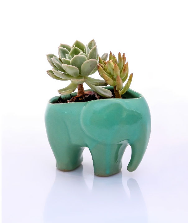 AD-Gifts-For-Elephant-Lovers-12