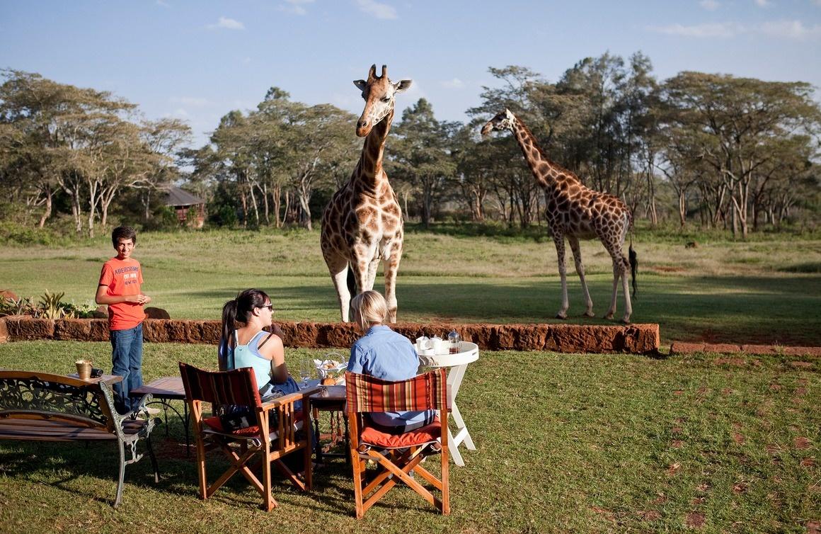 AD-Girrafe-Manor-Nairobi-Kenya-16