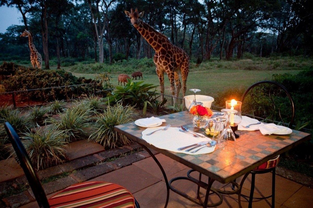 AD-Girrafe-Manor-Nairobi-Kenya-17
