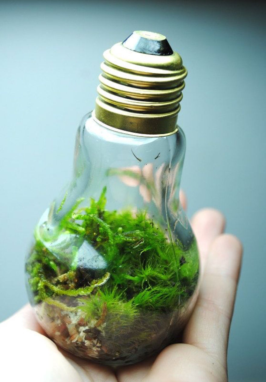 AD-Ideas-For-Recycling-Light-Bulbs-06