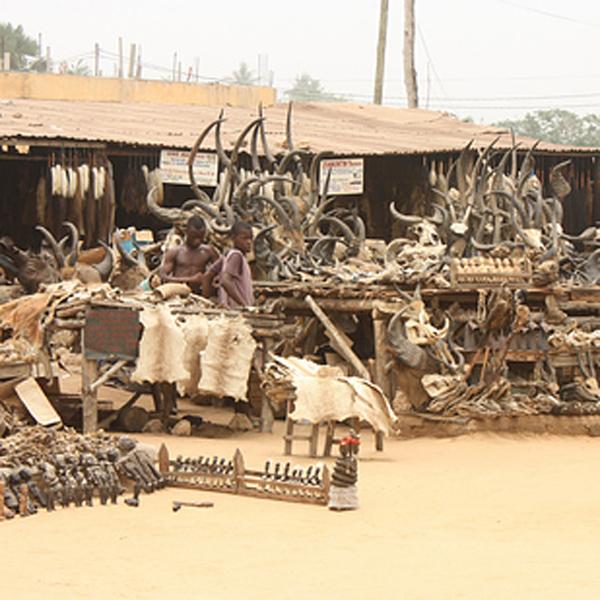 12-Akodessewa-Fetish-Market-Togo-AD