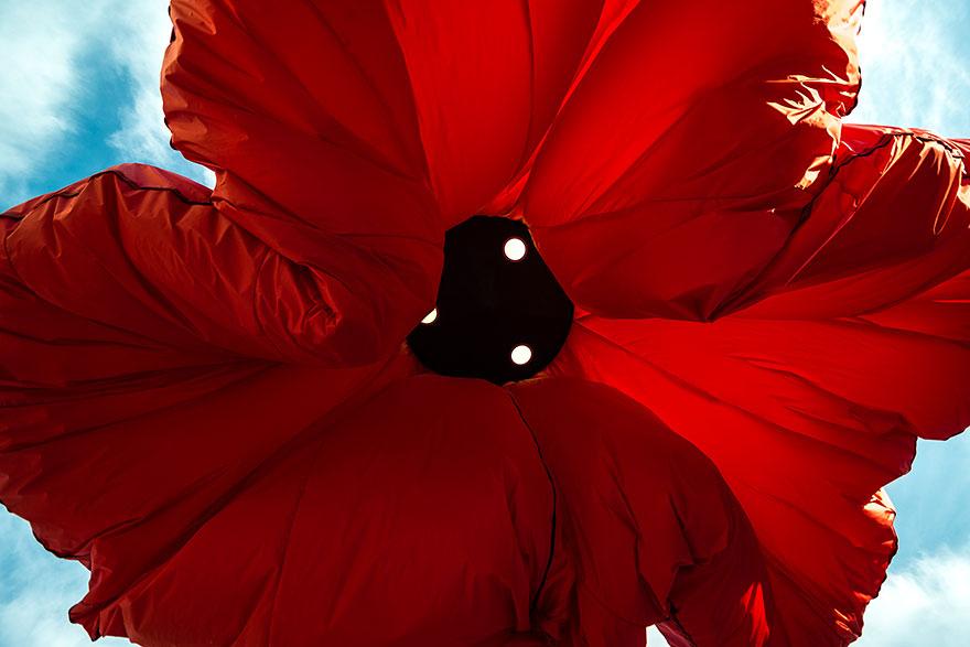 AD-Inflating-Flowers-Warde-HQ-Architects-Jerusalem-04
