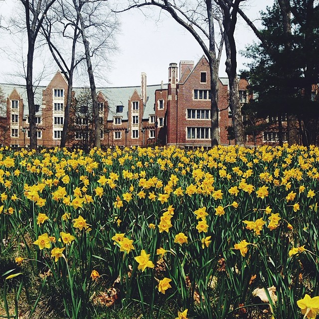 AD-The-Most-Beautiful-College-Campuses-In-America-12