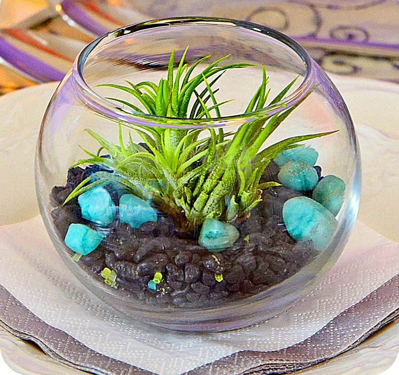 AD-Adorable-Miniature-Terrarium-Ideas-For-You-To-Try-08