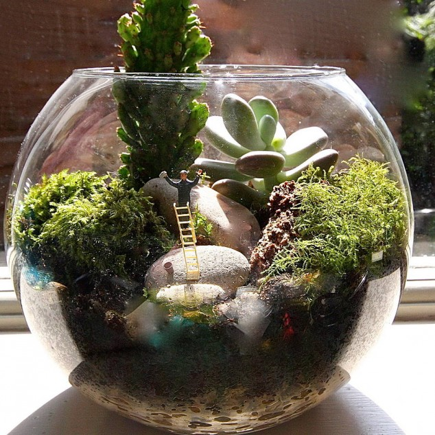 AD-Adorable-Miniature-Terrarium-Ideas-Fo