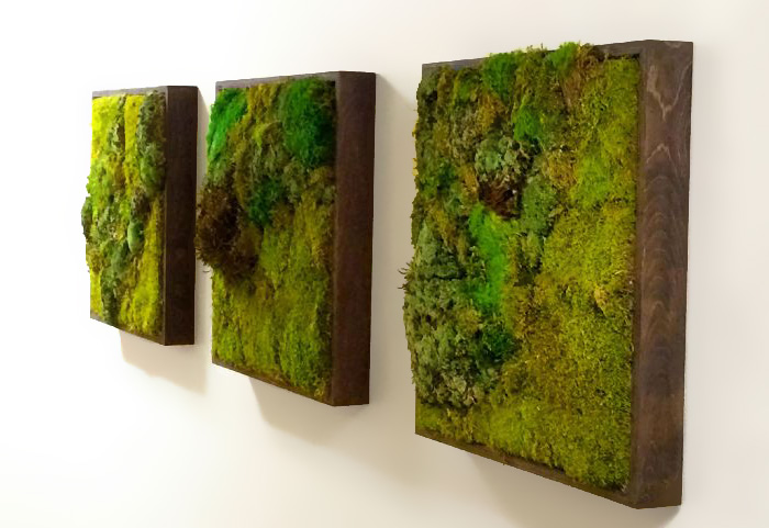 AD-Moss-Walls-Green-Interior-Design-Trend-10