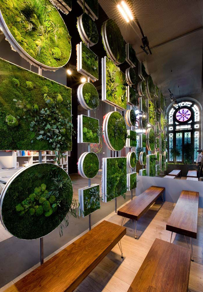 Kitchen Room Interior Design: Moss Walls: The Interior Design Trend That Turns Your Home